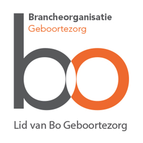 logo website BO
